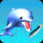 【カワイイ!!】イルカの餌付け ~Feed Dolphins~ │ エサ食わせてやれ!